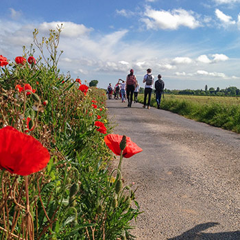 Laurier students explore memory, commemoration through battlefield tour course