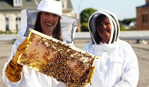 Monaghan poses with bees from the Brantford campus Apiary.