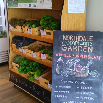 Image - Veritas Café hosts market featuring produce grown in Laurier's Northdale community garden